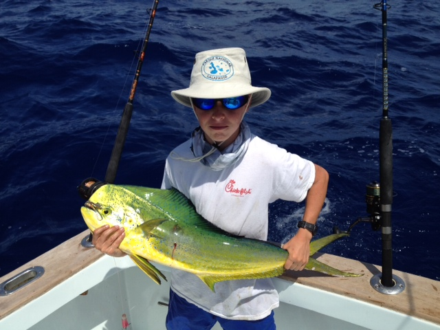 Deep sea fishing report at the end of march islamorada for Bud n mary s fishing report