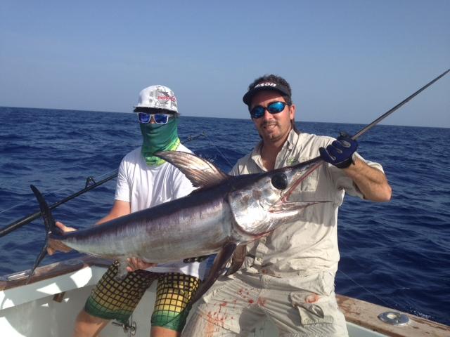 8 23 12 islamorada florida keys fishing report for Bud n mary s fishing report