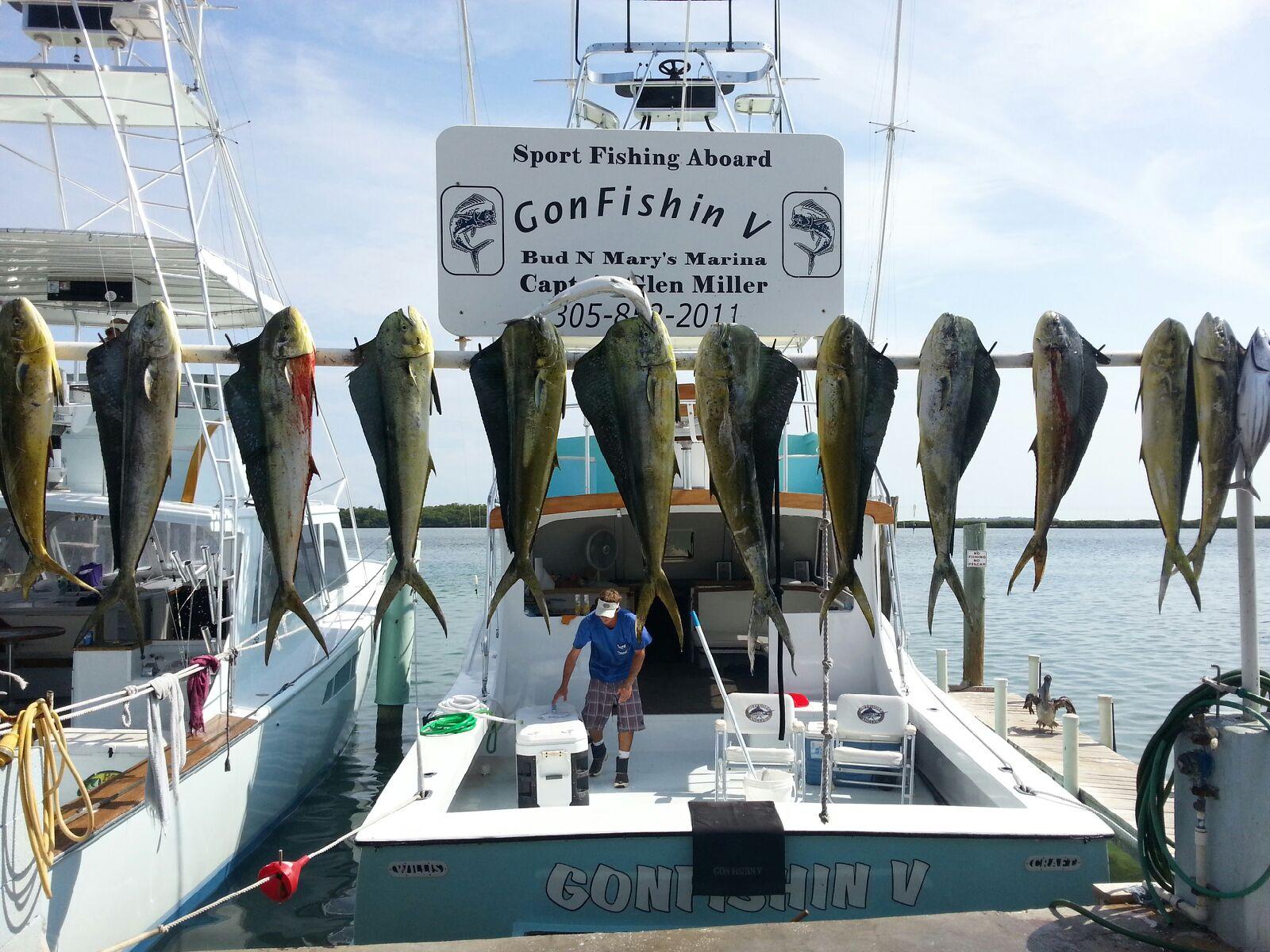 5 19 13 offshore fishing in the florida keys islamorada for Tuna fishing florida