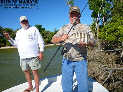 12 21 13 december backcountry florida keys fishing report for Bud n marys fishing report