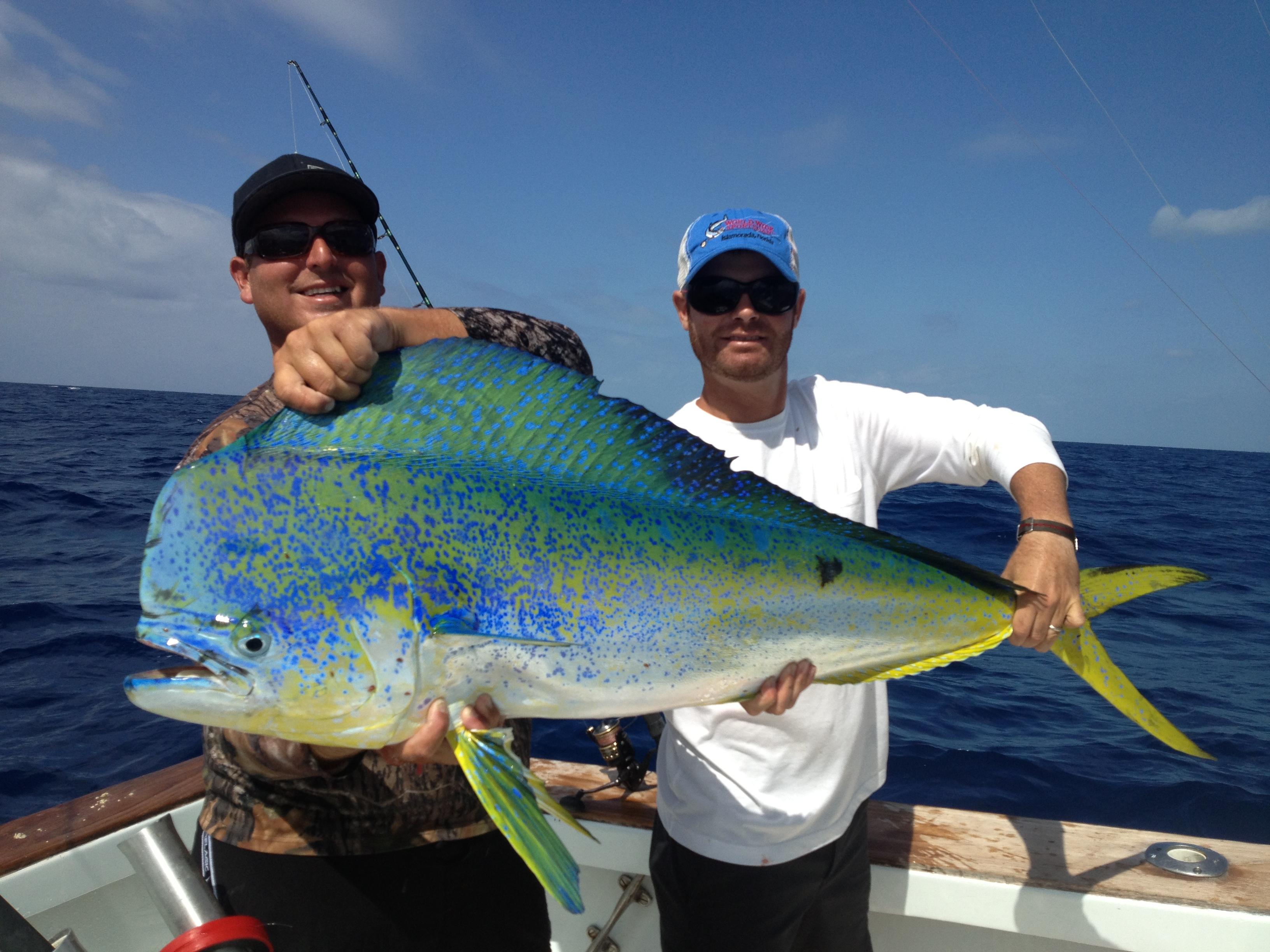 Islamorada fishing reports bud n marys florida keys for Bud n mary s fishing report