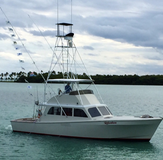 2015 sailfish tournament wins by the bud n 39 mary 39 s fleet for Bud and mary s fishing report