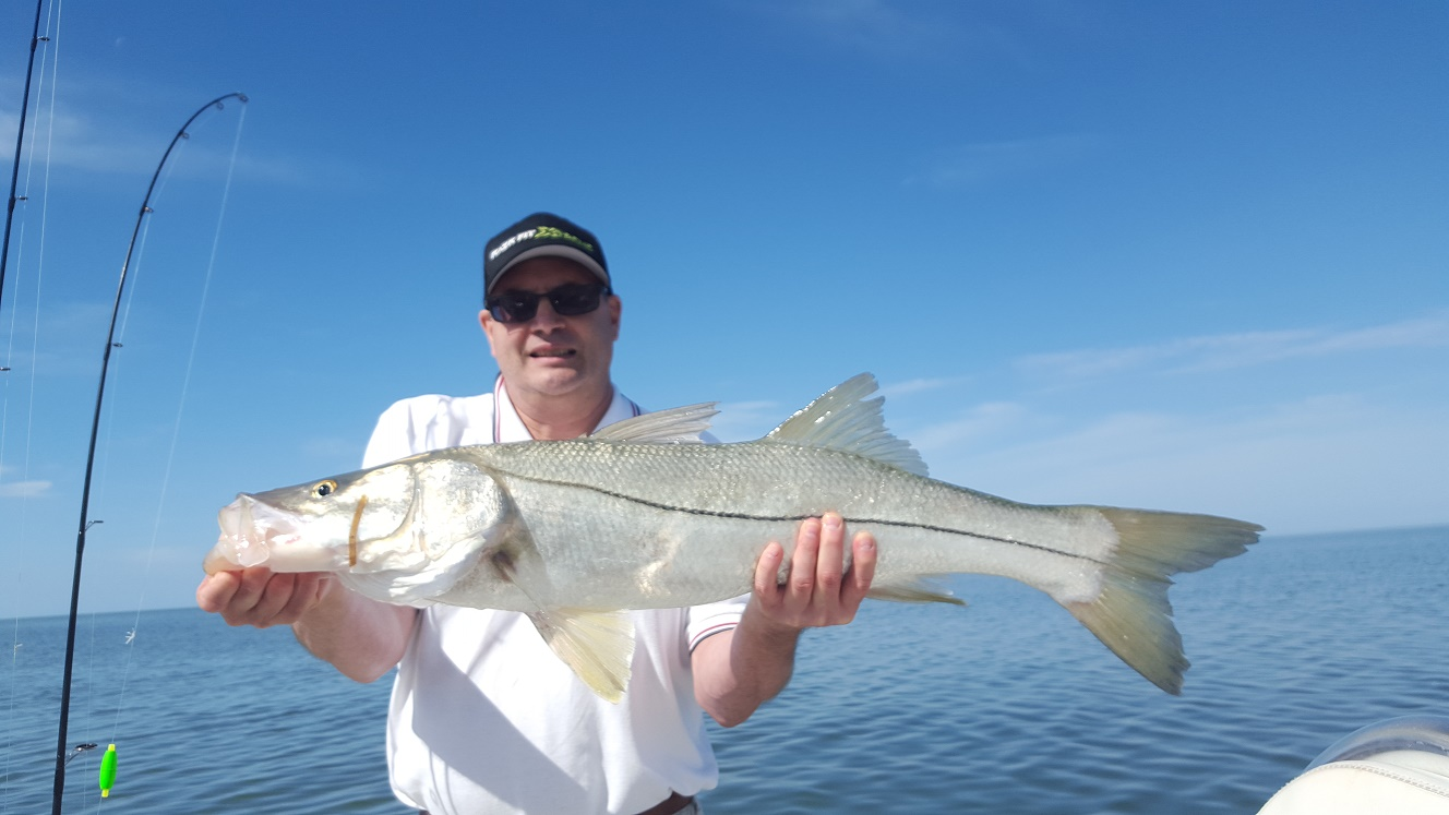 3 3 16 spring time backcountry fishing in islamorada for Bud n mary s fishing report