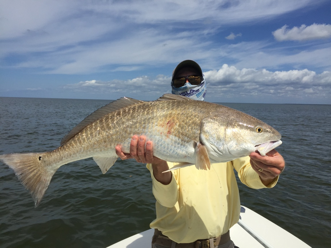 3 3 16 spring time backcountry fishing in islamorada for Florida keys fishing guides