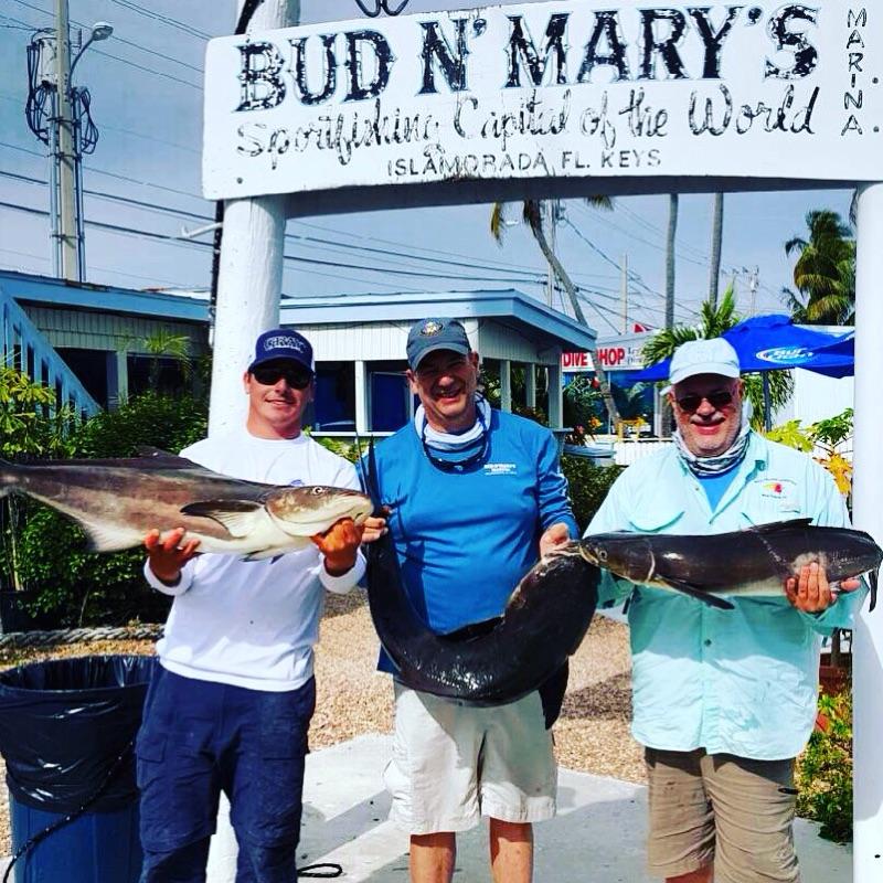 Islamorada fishing charters fishing trips florida keys for Islamorada fishing guides
