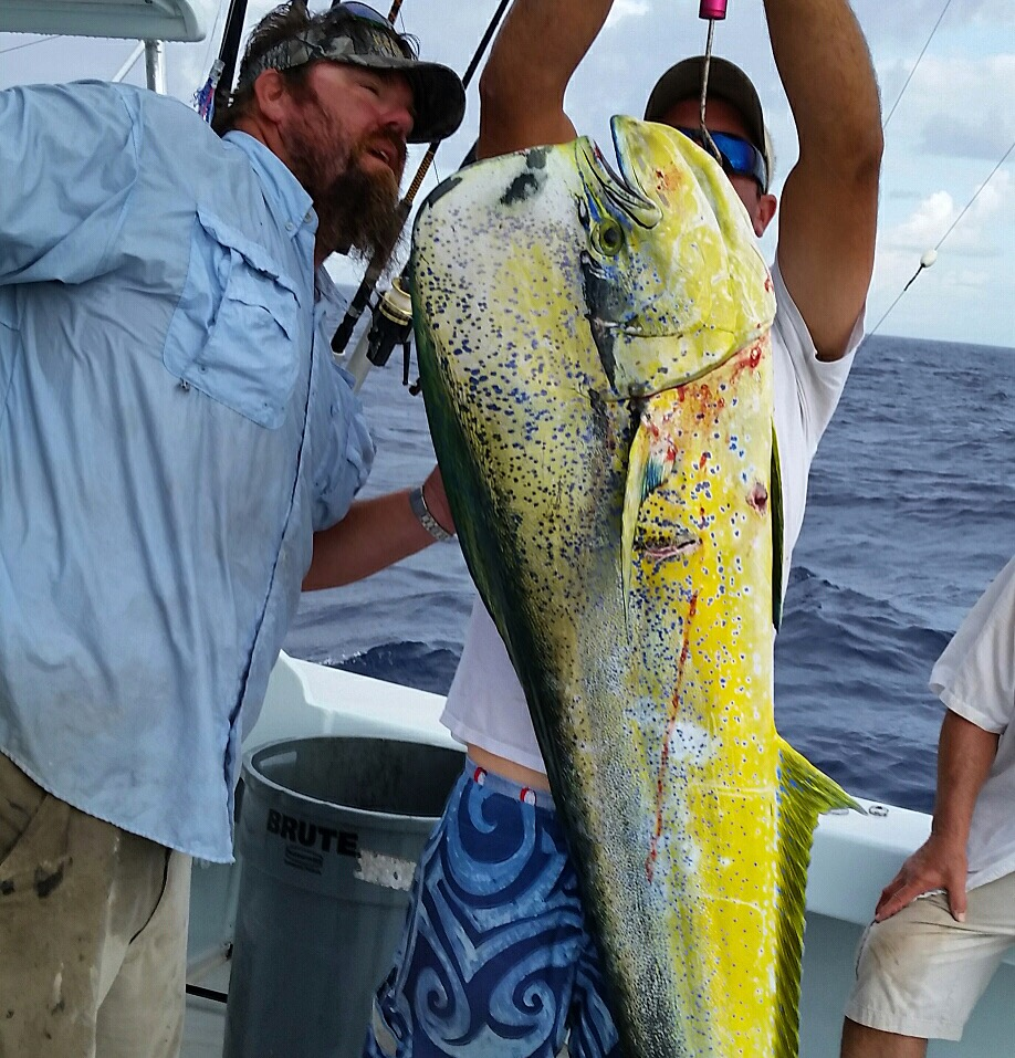 6 1 16 offshore fishing in islamorada florida keys for Tuna fishing florida
