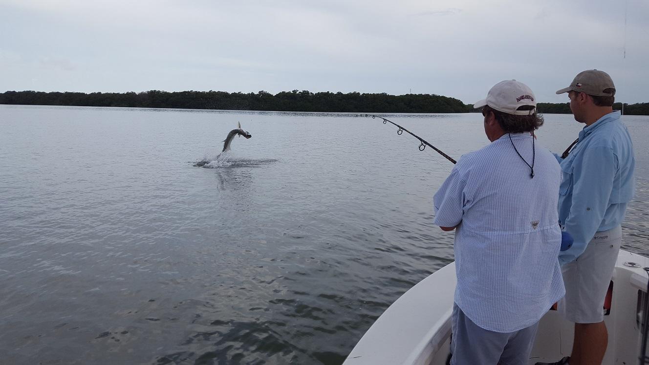8 12 16 august backcountry islamorada fishing report for Florida keys fishing charters