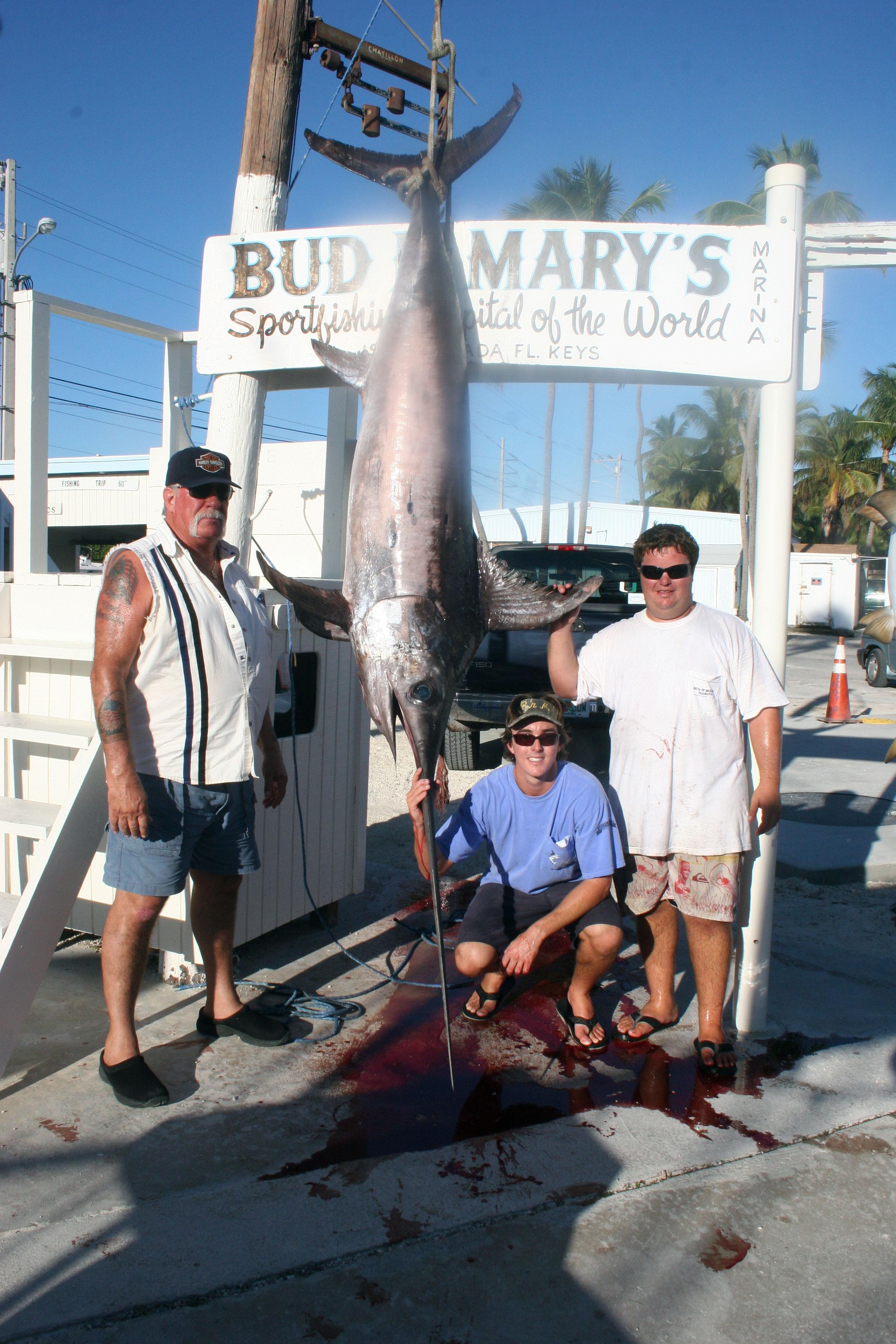 Big swordfish blog bud n 39 mary 39 s florida keys fishing for Bud n marys fishing report