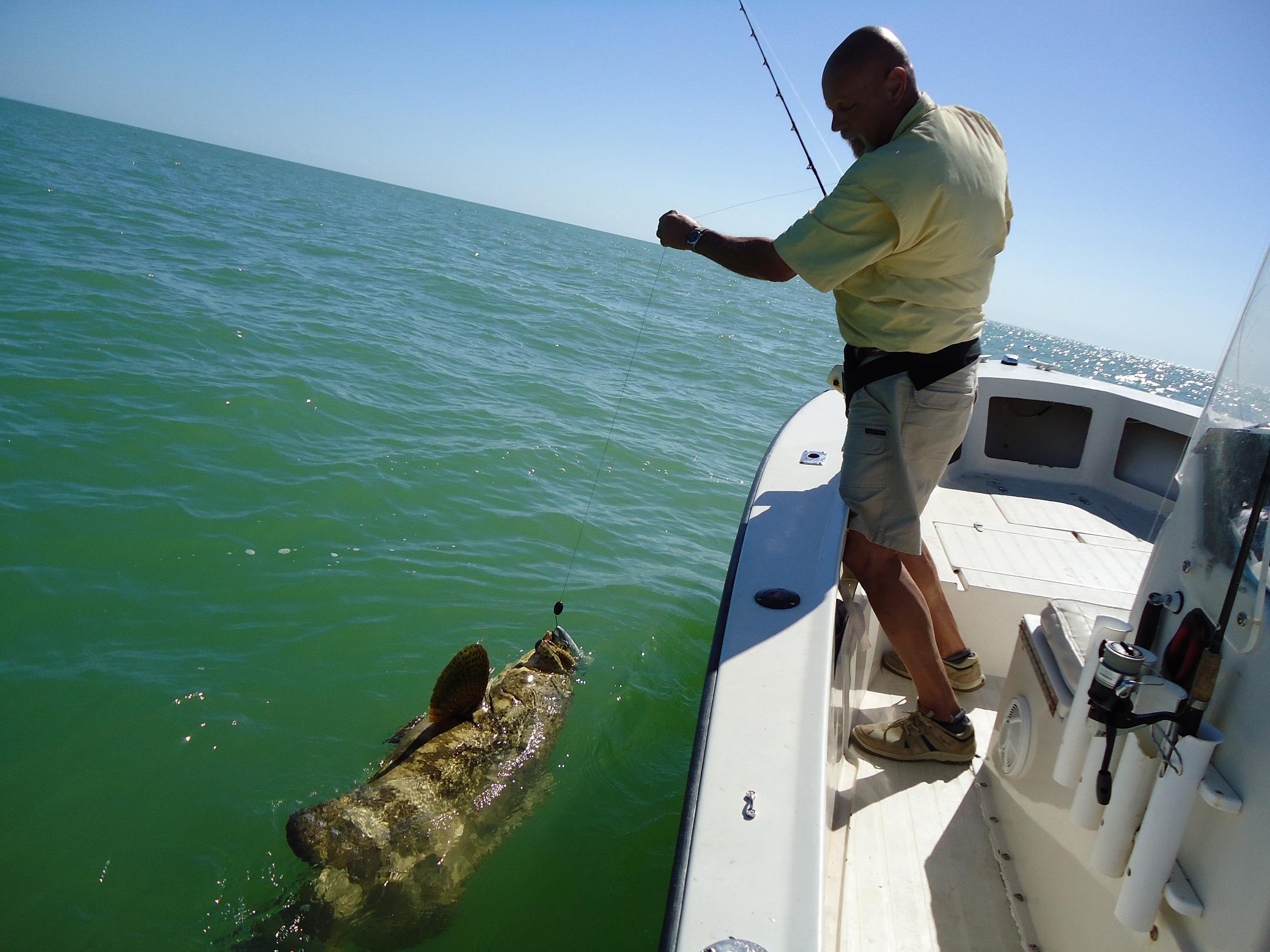 islamorada florida keys fishing report bloodydecks