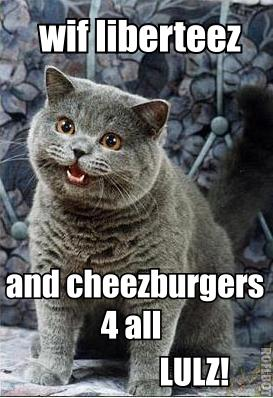 lolcats 4th of july
