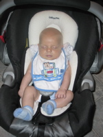 carseat2.jpg