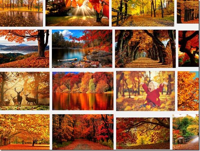 autumn - Google Search - Mozilla Firefox 27092016 083744.bmp
