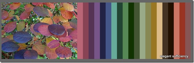 Color Palette FX - Create Color Palettes from Images - Mozilla Firefox 06112016 183401