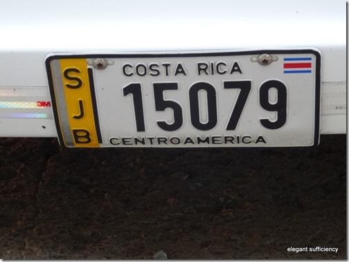 52-DSC01338