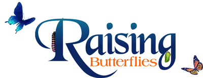 Raising Butterflies