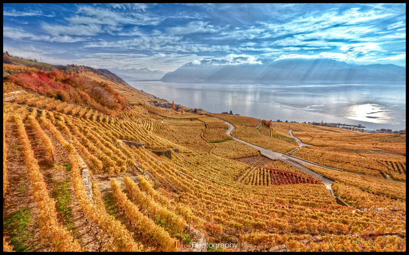 7 high resolution wallpapers of the lavaux vineyard for Terraced landscape definition