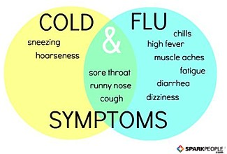 causes of the flu essay Swine flu can cause fever, disorientation (not being clear-headed), stiffness of the  joints, vomiting, and loss of consciousness sometimes this ends in death.