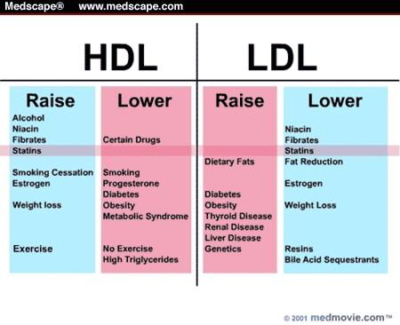 Best cheapest weight loss supplement