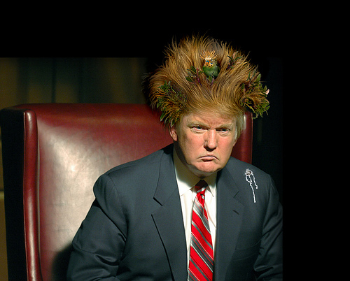http://thedailybail.squarespace.com/storage/trump-hair.jpg?__SQUARESPACE_CACHEVERSION=1254796825301