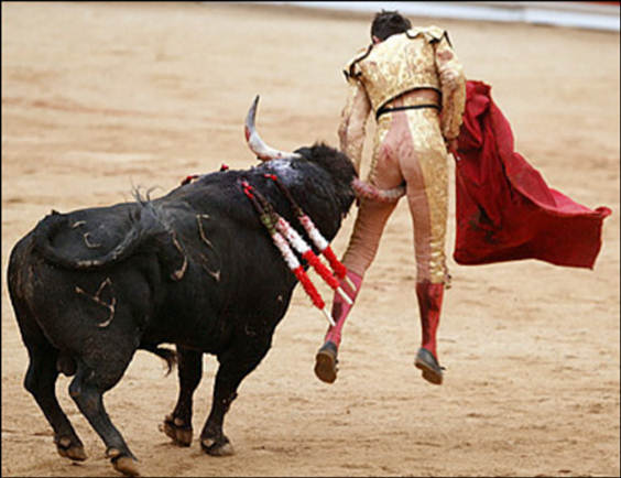 Bullfighters Bulges http://dailybail.com/home/extend-pretend-spain-uses-social-security-fund-to-prop-up-fa.html