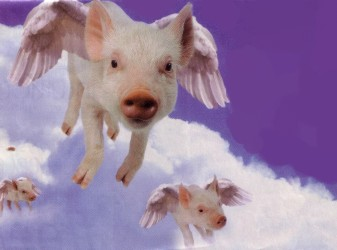 http://dailybail.com/storage/flying_pigs.jpg?__SQUARESPACE_CACHEVERSION=1284956011997