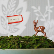 DIY Mossy Display by Cori Kindred