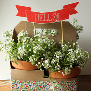 Flower Pot Gift with Printable Banner from Dandee