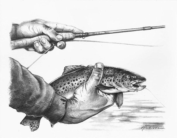 fly fishing drawing - photo #31
