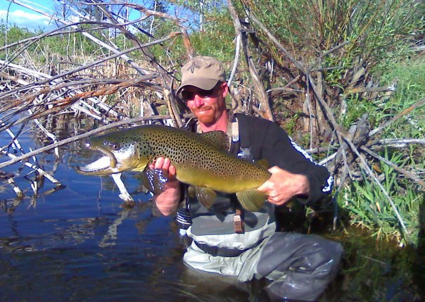 Fly fishing blog photos podcasts travel gear for Silver creek idaho fishing