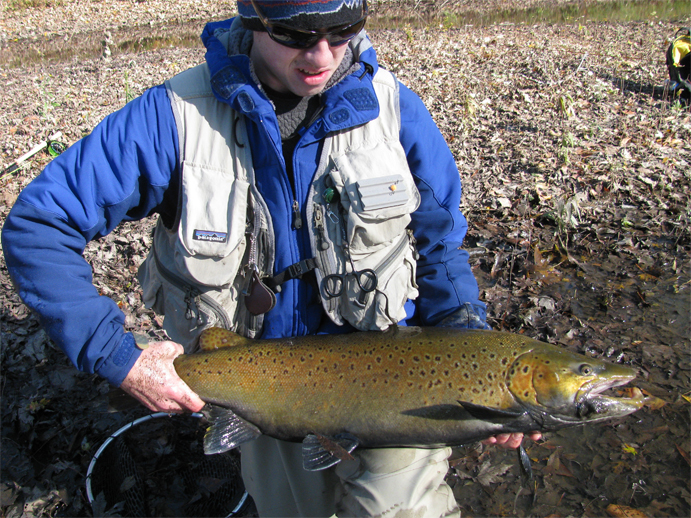 Fly fishing blog photos podcasts travel gear for Milwaukee river fishing