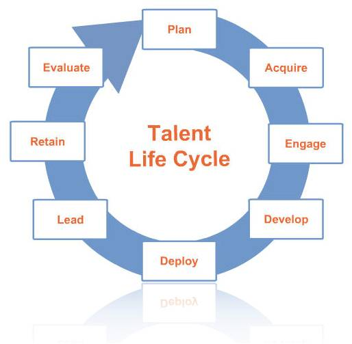Talent Life Cycle Americanincite