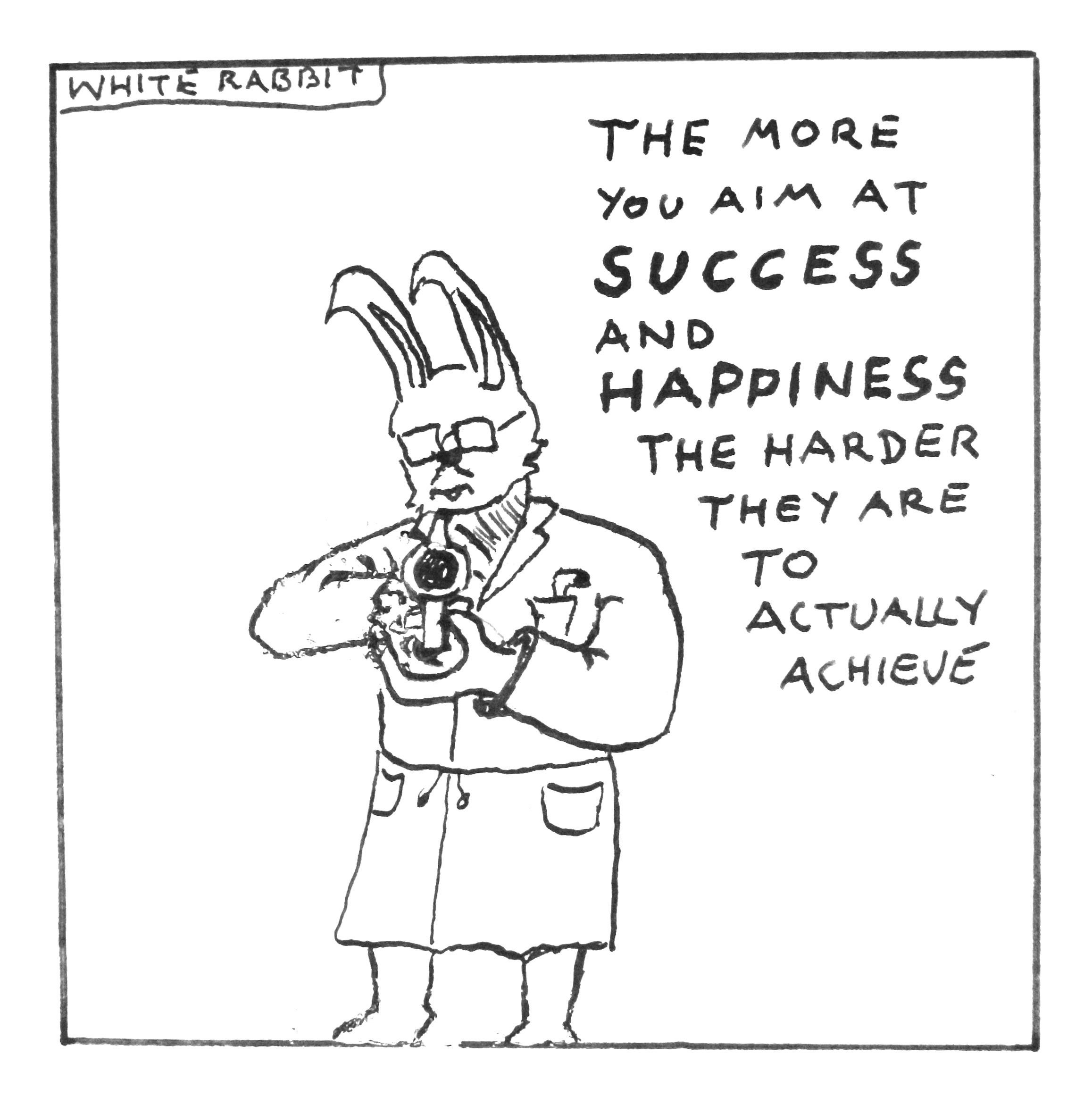 the white rabbit on success white rabbit 3 blog learning Bunny Grooming robert twigger