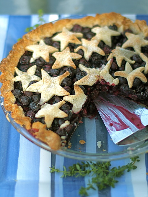 Blueberry Pie with Lemon Thyme Crust - The Sensitive Pantry - Gluten ...