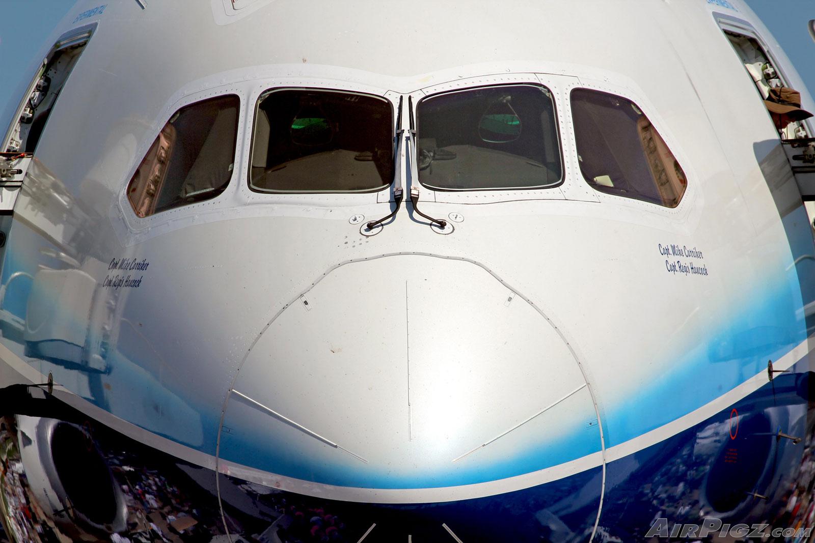 http://airpigz.com/storage/hi-res/OSH11-787-Nose.jpg