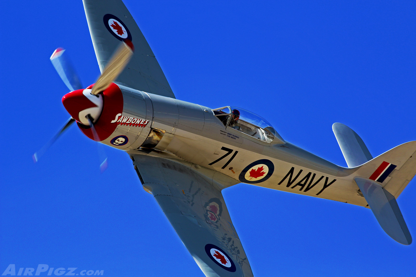CoolPix: 'Sawbones' Sea Fury At Pylon 8 - Reno 2012 - blog - AirPigz