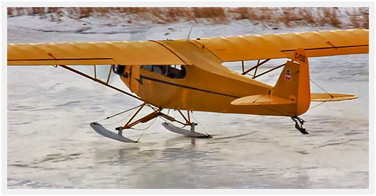 http://airpigz.com/blog/2013/12/17/video-wow-did-you-see-this-cub-land-on-skis.html