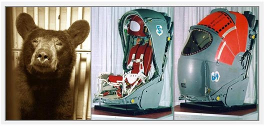 58 Proves Supersonic Ejection To Be Bear-able In 1962