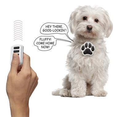 Dog That Can Talk Wendy
