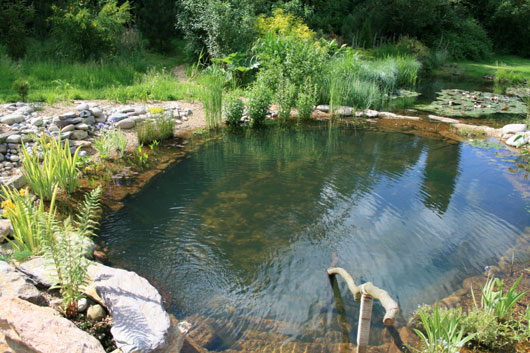Beautiful Natural Swimming Pools and Ponds by gartenArt ...