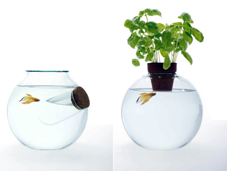 Designtodesign magazine the for Fish bowl drinks near me