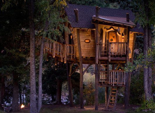Small and Artistic Tree House Design by Green Line Architects ... on online furniture, online blueprints, online magazines,