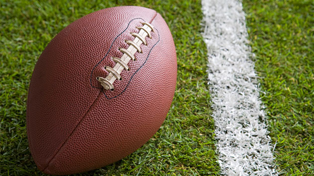 Roundup of Newly Hired NFL Head Coaches