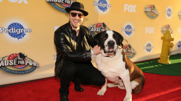"""Gavin DeGraw, Pink & More Appearing Thanksgiving Night on """"Cause for Paws: An All-Star Dog"""