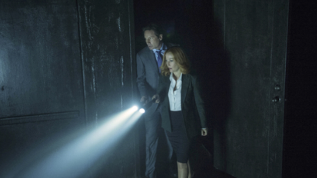 """Gillian Anderson is out, but would David Duchovny return for more """"X-Files""""?"""