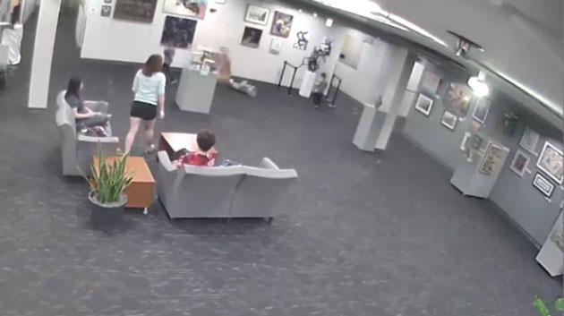 Parents face $132,000 claim after kid knocks over sculpture