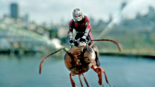 Study says watching 'Spider-Man', 'Ant-Man' can reduce phobias of insects
