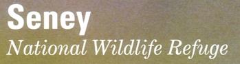 "Photo of brochure for ""Seney National Wildlife Refuge"""