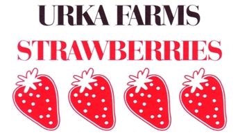 "Photo of brochure for ""Urka Farms Strawberries"""