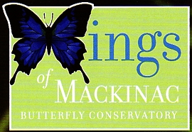 "Photo of brochure for ""Wings of Mackinac"""