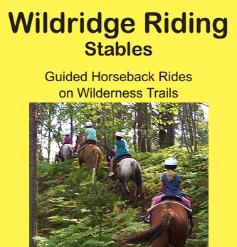 "Photo of brochure for ""Wildridge Riding Stables"""